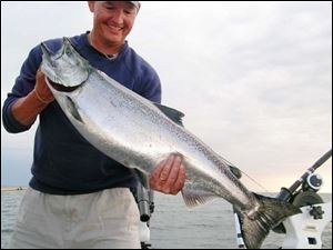 This 20-pound-plus king salmon taken in Lake Ontario was landed by Port Clinton's Steve Hathaway after a 20-minute fight.