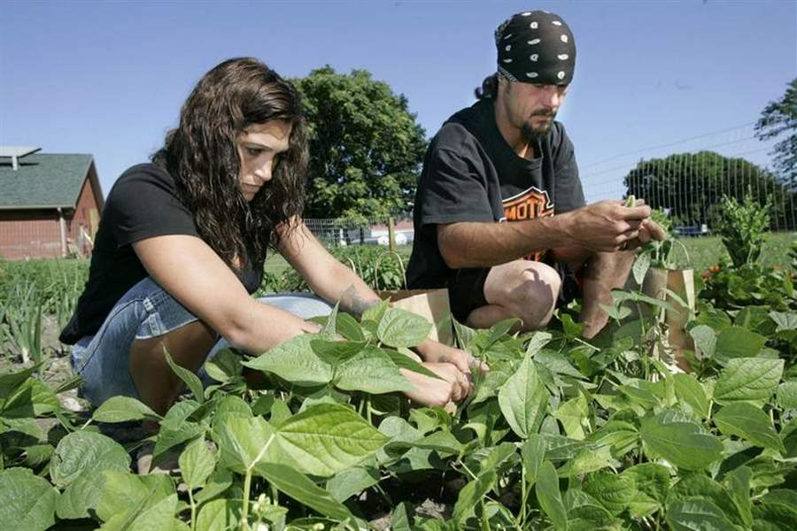 Monroe-Family-Manor-residents-reaping-healthy-harvest
