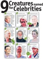 NINE-CREATURES-NAMED-FOR-CELEBRITIES