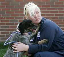 Goal-for-more-dog-adoptions-set-for-Lucas-County-pound