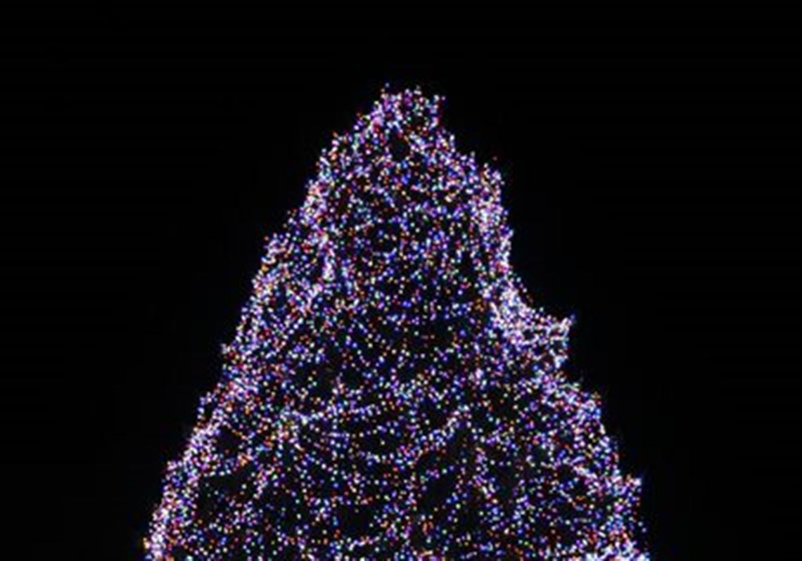 Christmas At The Zoo.Lights Before Christmas At The Toledo Zoo Toledo Blade