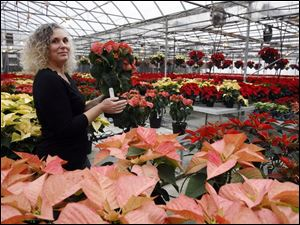 Alicia Bostdorff Timm stands with the trial poinsettias at Bostdorff's. There are experimental cuttings in 42 varieties.