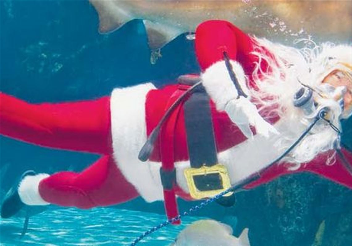 greater cincinnati holiday attractions beckon families toledo blade
