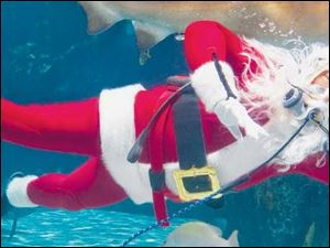 Scuba Santa waves to fans from a shark tank at the Newport Aquarium in Newport, Ky., a popular seasonal event in the area.