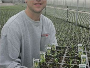 Mark Hecklinger holds some pepper plants.