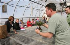 Big-day-for-tiny-trees-at-Ben-Sell-Greenhouse