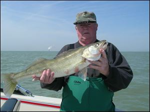 Charter boat captain Dan Tucker proudly shows off a fine spring walleye he teased up on a purple 'Weapon.'