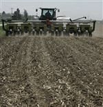 Cold-rain-in-area-delay-farmers-start-on-planting