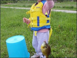 "spt POLLICK BLUEGILLS 2   sreceived 05/13/2009    handout photo   ***   NOT BLADE PHOTO       Four-year-old Samatha Drzewiecki hoists a hefty bluegill she caught on her first fishing trip, last weekend, with her dad, Norman Drzewiecki.  S6 s6samantha 2.935""x3.75"" black and white"