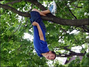 Slug: ROV treeclimb            Date 6/2/2009           The Blade/ Amy E. Voigt              Location: Toledo, Ohio  CAPTION:  East Side Central Elementary School student John Perez hangs upside down on a small tree in Navarre Park while on an outing with their sixth grade class. The kids were allowed to dress down (not wear their uniforms), have ice cream at Deb's Soft Kreme, and play in the park on the day before their last day of school.