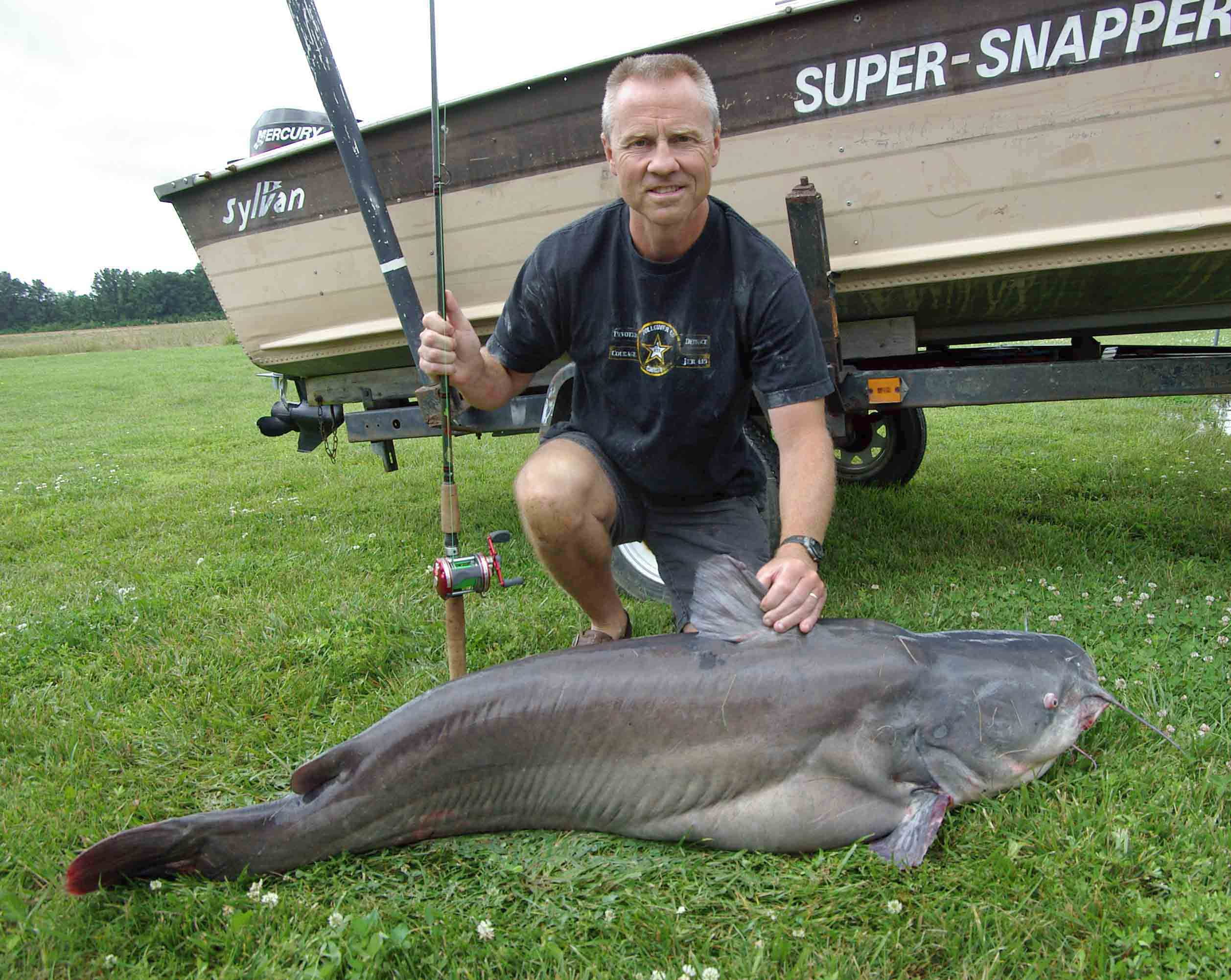 Catfish with a big meow the blade for Fat fish blue toledo