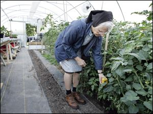Sister Grace Ellen checks the soil temperature and moisture content in the greenhouse the Sisters of St. Francis built.