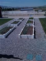 Build-your-own-raised-bed-vegetables-3