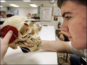Trey Schell, 14, of Fremont examines a skull during Camp Scrubs, where youngsters learn how to investi-gate crime scenes and work in laboratories to gather the evidence needed to solve crimes.
