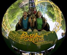 Bud-deposits-theme-parks