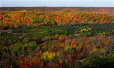 Fall-s-big-show-Michigan-and-Ohio-including-our-metroparks-are-ablaze-with-color-now