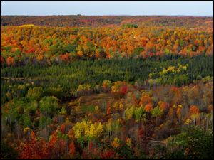 Fall colors at their peak in the Jordan River Valley near Mancelona, Mich.