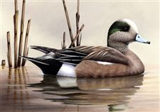 Maryland-man-s-art-will-grace-next-year-s-duck-stamp