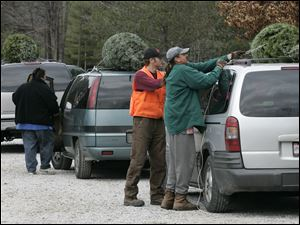 About 700 families visited the Whitehouse Christmas Tree Farm last weekend, the same as a year ago.