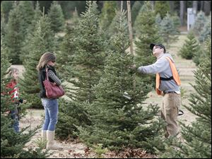 Pat Murtagh measures a tree for Jackie Sweeney and daughter Anika, 8, of Sylvania at the Whitehouse Christmas Tree Farm, where smaller and moderate-sized trees are selling well.