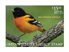 Wildlife-division-hoping-oriole-stamp-raises-funds