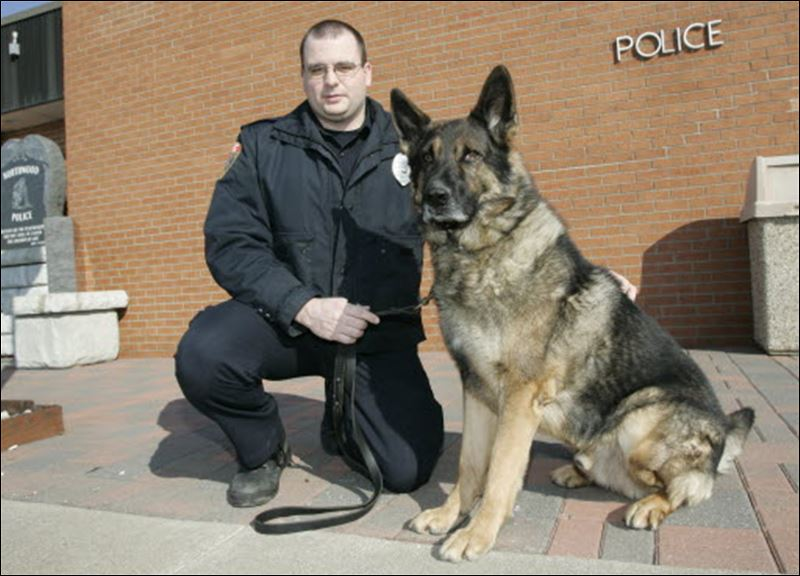 how to become a bomb dog handler