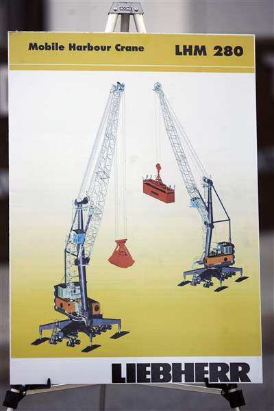 Contest-announced-to-name-the-cranes-2