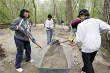 Volunteers-build-a-trail-in-Swan-Creek-Metropark