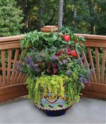 Practical-Meets-Pretty-Container-Gardening-For-Beauty-And-Bounty
