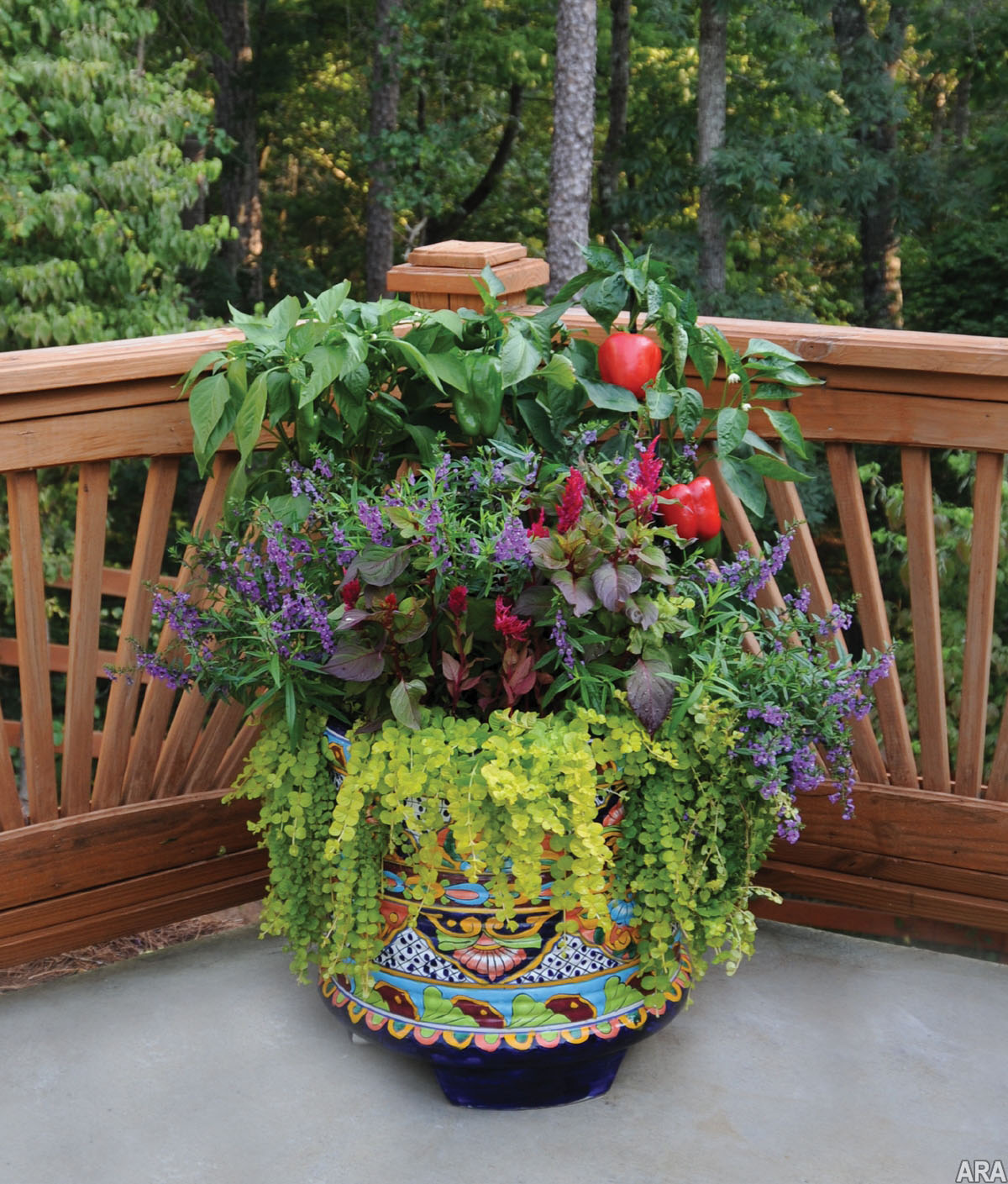 Practical Meets Pretty: Container Gardening For Beauty And