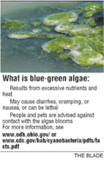 Ottawa-County-park-posts-warnings-about-algae-3