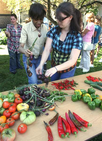 Autism-Academy-harvests-bounty-at-its-garden-party-2
