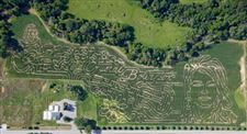 Toledo-area-is-corn-maze-heaven