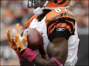 Bengals wide receiver Terrell Owens makes a catch on a 78-yard touchdown pass play in the second quarter. He caught 10 passes for 222 yards but it wasn't enough for the Bengals, who fell to 2-2.