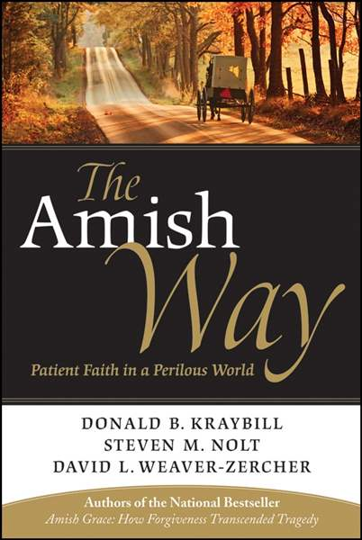 Book-cracks-open-cover-on-Amish-s-basic-beliefs-2