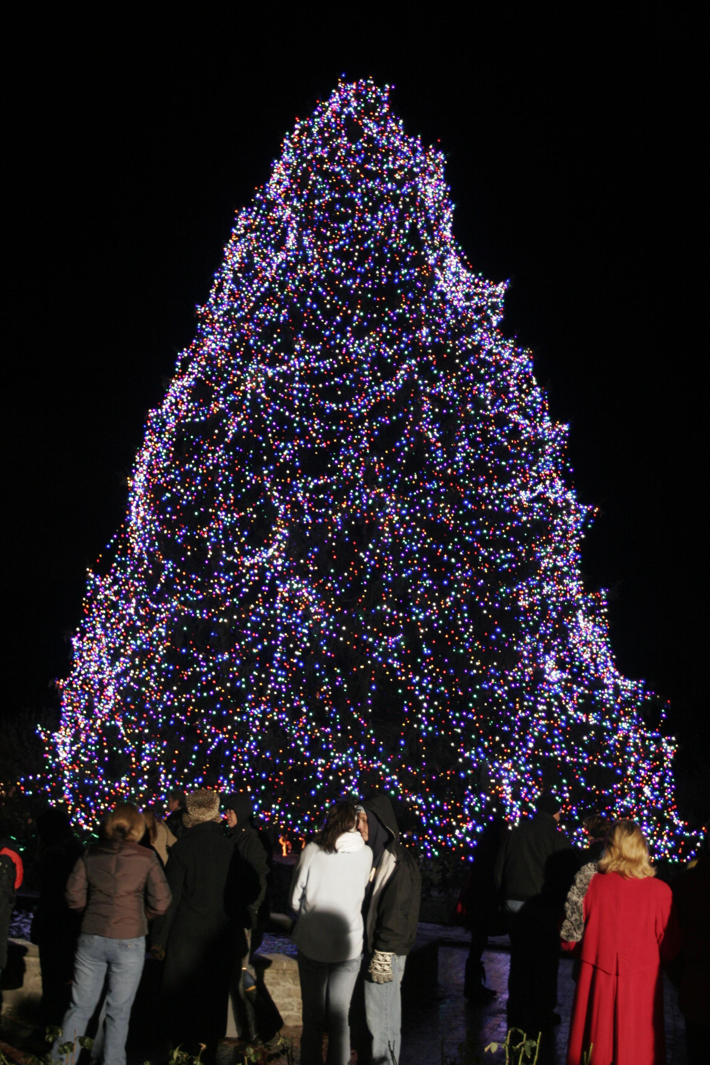 toledo zoos lights before christmas unveils pedal power the blade - Toledo Zoo Lights Before Christmas