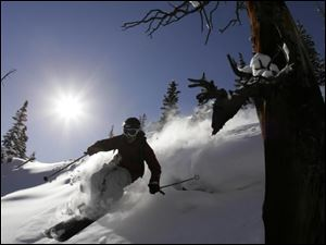 A skier enjoys the powder on Oly Bowl in Aspen Highlands.