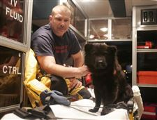 Dog-rescued-from-Maumee-River-is-euthanized