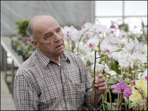The peace and joy that tending orchids gives Ron Ciesinski eclipses December's $2,400 gas bill for heaters that keep the hot houses at 62 degrees.