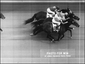 A dead heat for first among three horses like this photo finish is among the reasons crowds flocked to Maumee Downs.