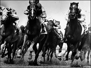 These horses and jockeys, running at Raceway Park on Oct. 24, 1983, are part of the more than century-old tradition of horse racing in the Toledo, Ohio, area.