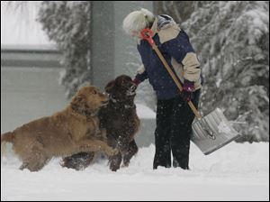 Toledoan Marthe Howard takes a break from shoveling snow off of her River Road driveway to play with dogs, Bo, left, and Cass.
