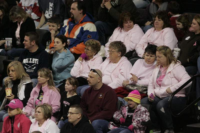 Pink-in-the-Rink-crowd