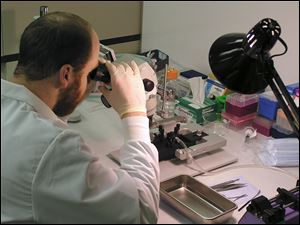 A technician works at Mithridion, a Wisconsin company that develops treatments for Alzheimer's disease and other nervous system conditions. In 2008, it purchased a company founded by UT professors.