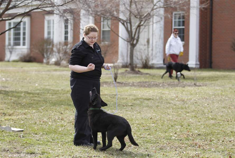 jada-lucas-county-dog-warden-budget-cuts