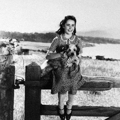 Elizabeth-Taylor-National-Velvet-dog