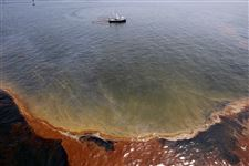 Story-Oil-Spill-Chandeleur-Sound
