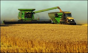 Growers, farm-equipment makers, and seed producers are expected to reap record profits with the rise in wheat prices and U.S. exports.