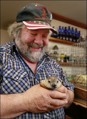Charlie Hoag holds his new baby groundhog, HuckyToo, at his home in Springfield Township near Holland. Mr. Hoag owned Holland Huckleberry, locally known as a weather prognosticator, who died in 2010.