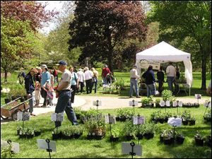 The Toledo Botanical Garden's annual plant sale runs Friday through Sunday.